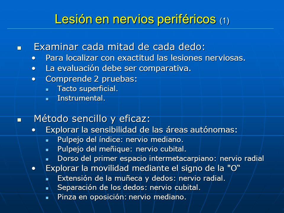 Lesión en nervios periféricos (1) Examinar cada mitad de cada dedo: Examinar cada mitad de cada dedo: Para localizar con exactitud las lesiones nervio