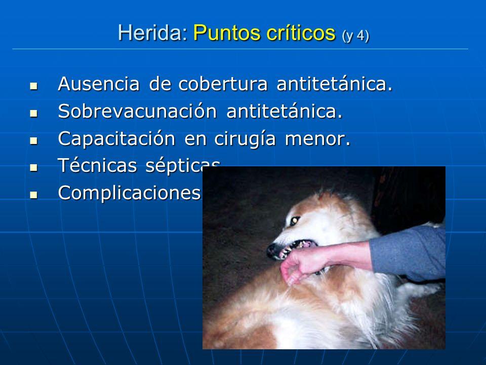 Herida: Puntos críticos (y 4) Ausencia de cobertura antitetánica. Ausencia de cobertura antitetánica. Sobrevacunación antitetánica. Sobrevacunación an