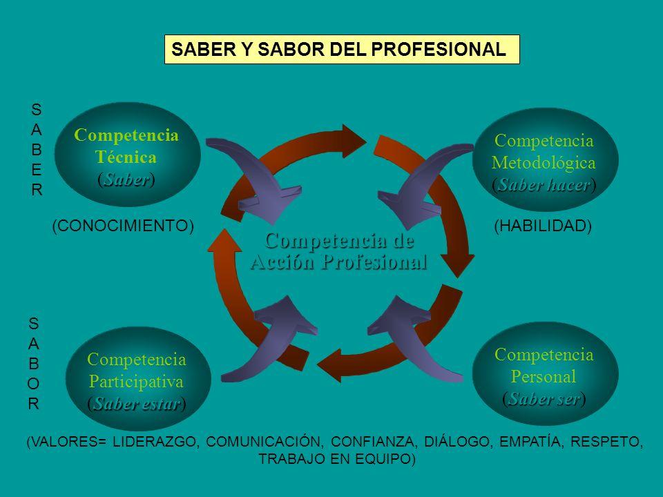 Competencia de Acción Profesional Saber Competencia Técnica (Saber) SABER Y SABOR DEL PROFESIONAL (Adaptado de B. Echeverría, 2001) Saber hacer Compet