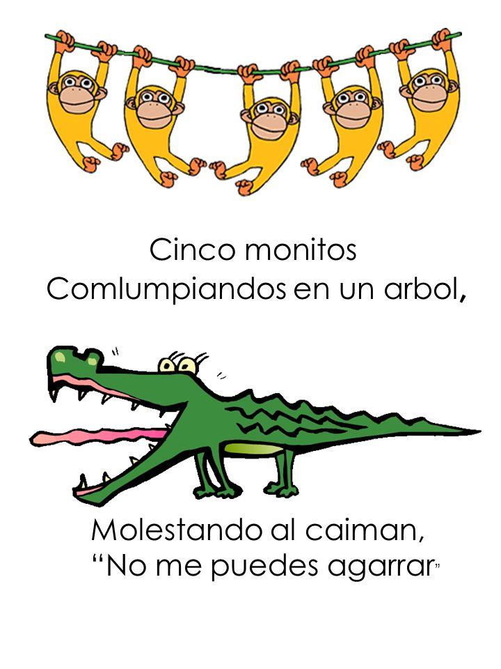 Cinco monitos Comlumpiandos en un arbol, Molestando al caiman, No me puedes agarrar