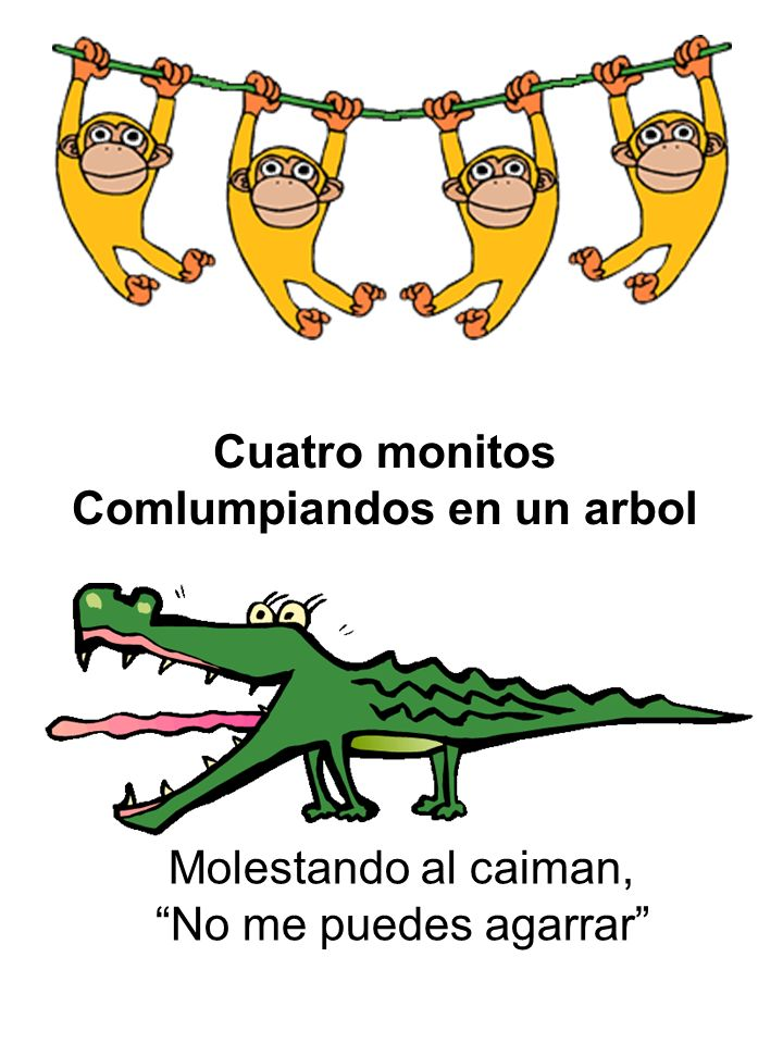 Cuatro monitos Comlumpiandos en un arbol Molestando al caiman, No me puedes agarrar