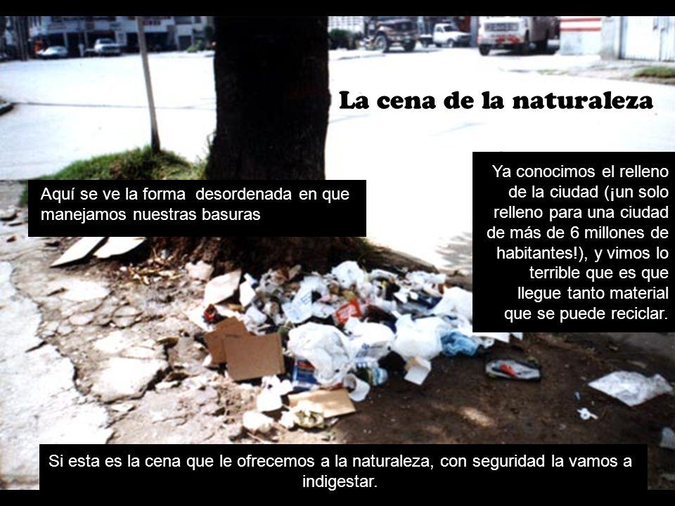La cena de la naturaleza Aquí se ve la forma desordenada en que manejamos nuestras basuras Ya conocimos el relleno de la ciudad (¡un solo relleno para