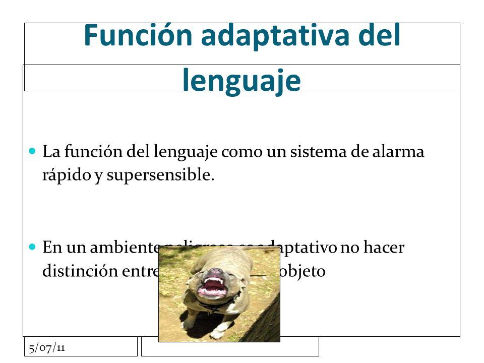 5/07/11 Función adaptativa del lenguaje La función del lenguaje como un sistema de alarma rápido y supersensible.