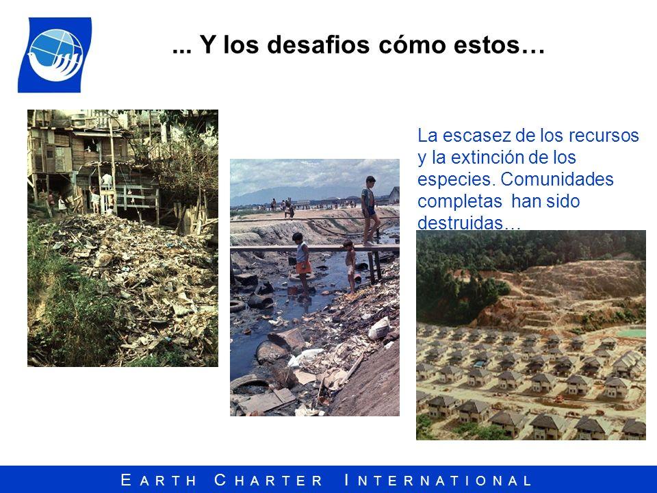 E A R T H C H A R T E R I N T E R N A T I O N A L... Y los desafios cómo estos… La escasez de los recursos y la extinción de los especies. Comunidades