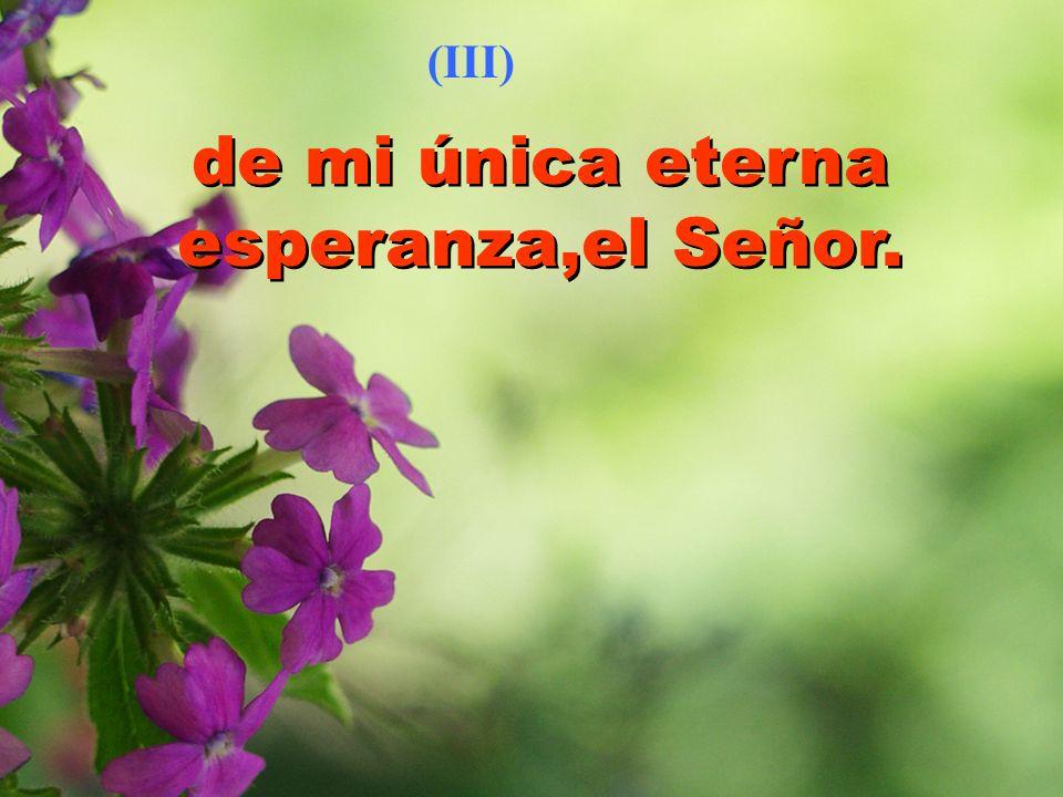 de mi única eterna esperanza,el Señor. (III)