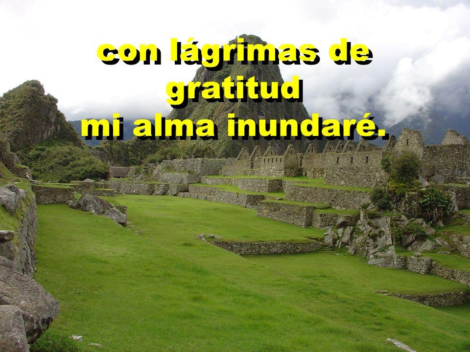 con lágrimas de gratitud mi alma inundaré. con lágrimas de gratitud mi alma inundaré.