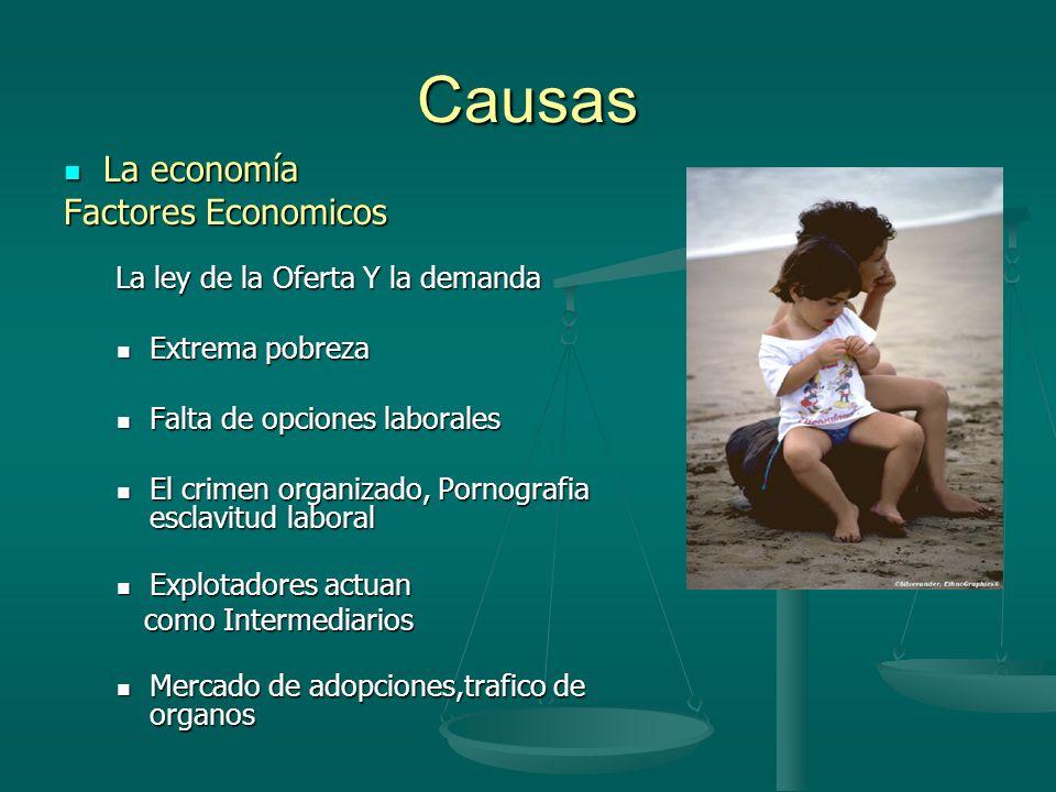 Causas La economía La economía Factores Economicos La ley de la Oferta Y la demanda La ley de la Oferta Y la demanda Extrema pobreza Extrema pobreza F