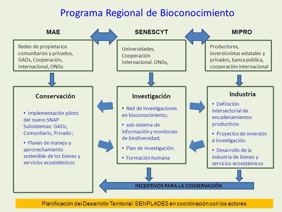 12 Redes de propietarios comunitarios y privados, GADs, Cooperación, Internacional, ONGs Conservación Implementación piloto del nuevo SNAP Subsistemas