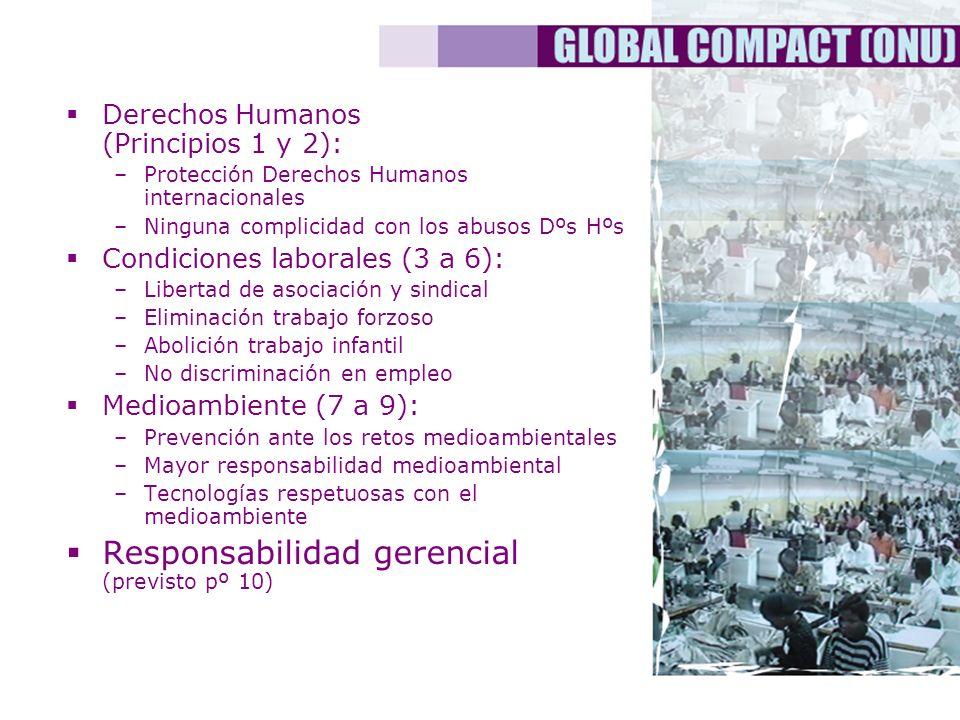 Derechos Humanos (Principios 1 y 2): –Protección Derechos Humanos internacionales –Ninguna complicidad con los abusos Dºs Hºs Condiciones laborales (3