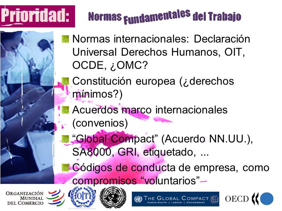 Normas internacionales: Declaración Universal Derechos Humanos, OIT, OCDE, ¿OMC? Constitución europea (¿derechos mínimos?) Acuerdos marco internaciona