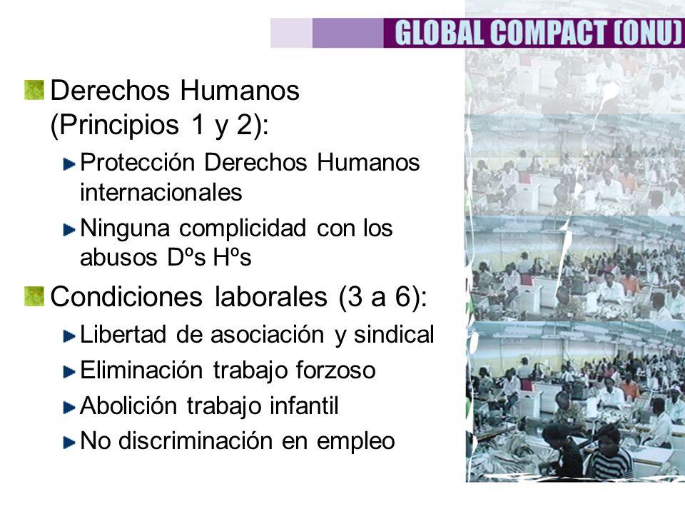 Derechos Humanos (Principios 1 y 2): Protección Derechos Humanos internacionales Ninguna complicidad con los abusos Dºs Hºs Condiciones laborales (3 a