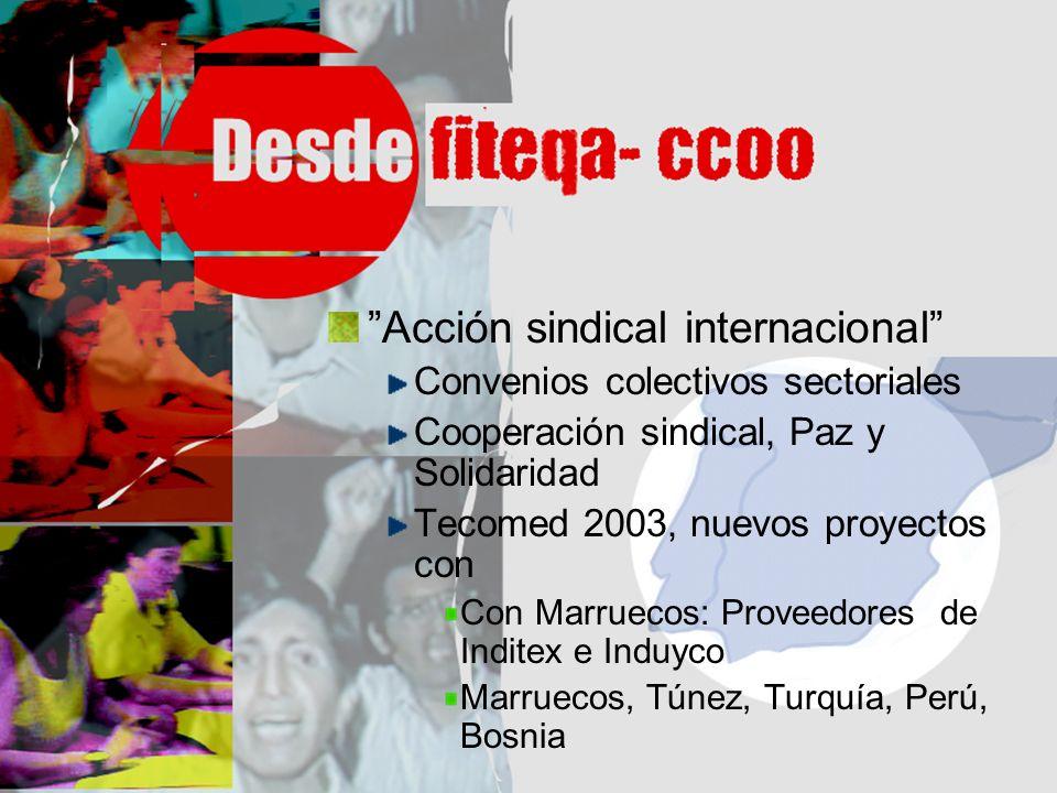 Acción sindical internacional Convenios colectivos sectoriales Cooperación sindical, Paz y Solidaridad Tecomed 2003, nuevos proyectos con Con Marrueco