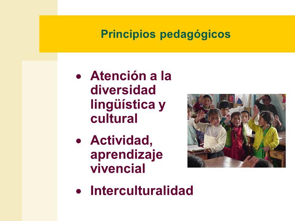 Principios pedagógicos Atención a la diversidad lingüística y cultural Actividad, aprendizaje vivencial Interculturalidad