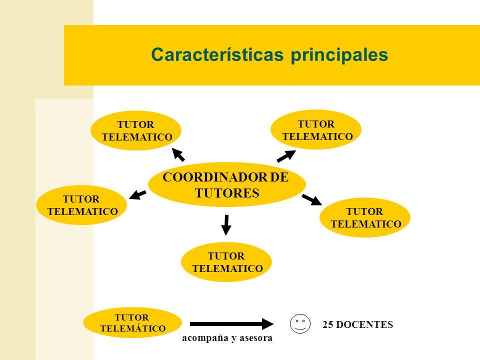 Características principales COORDINADOR DE TUTORES TUTOR TELEMATICO TUTOR TELEMATICO TUTOR TELEMATICO TUTOR TELEMATICO TUTOR TELEMATICO 25 DOCENTES TU
