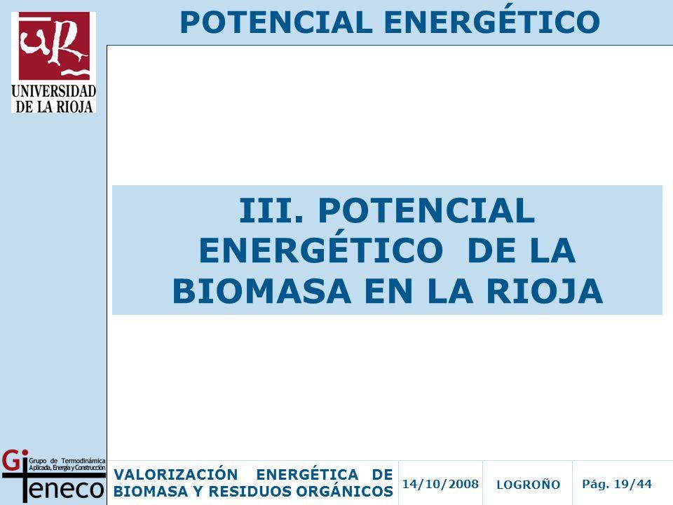 14/10/2008Pág. 19/44 VALORIZACIÓN ENERGÉTICA DE BIOMASA Y RESIDUOS ORGÁNICOS LOGROÑO POTENCIAL ENERGÉTICO III. POTENCIAL ENERGÉTICO DE LA BIOMASA EN L