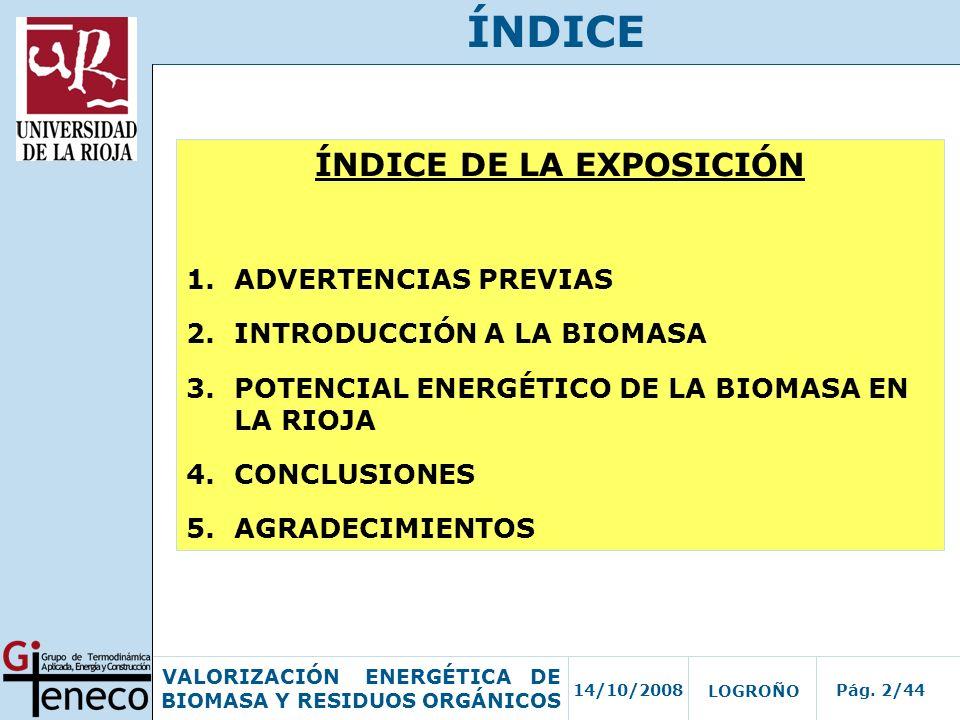 14/10/2008Pág. 2/44 VALORIZACIÓN ENERGÉTICA DE BIOMASA Y RESIDUOS ORGÁNICOS LOGROÑO ÍNDICE DE LA EXPOSICIÓN 1.ADVERTENCIAS PREVIAS 2.INTRODUCCIÓN A LA