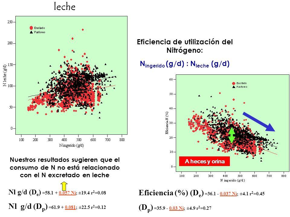 leche Nuestros resultados sugieren que el consumo de N no está relacionado con el N excretado en leche Nl g/d (D e ) =58.1 + 0.057 Ni; ±19.4 r 2 =0.08