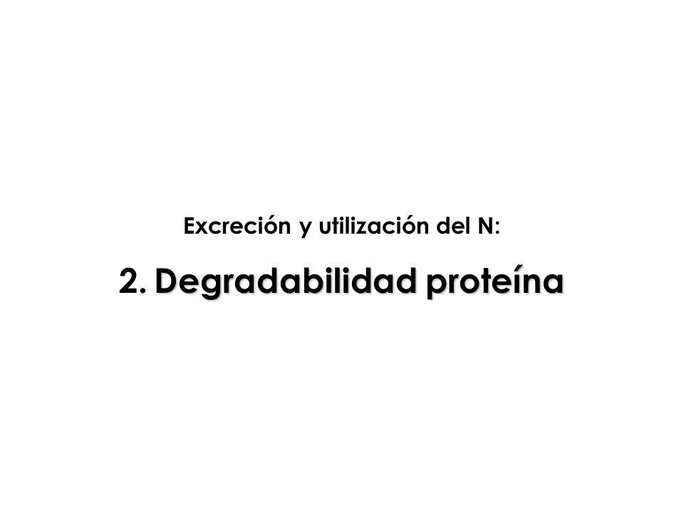 Excreción y utilización del N: Degradabilidad proteína 2. Degradabilidad proteína