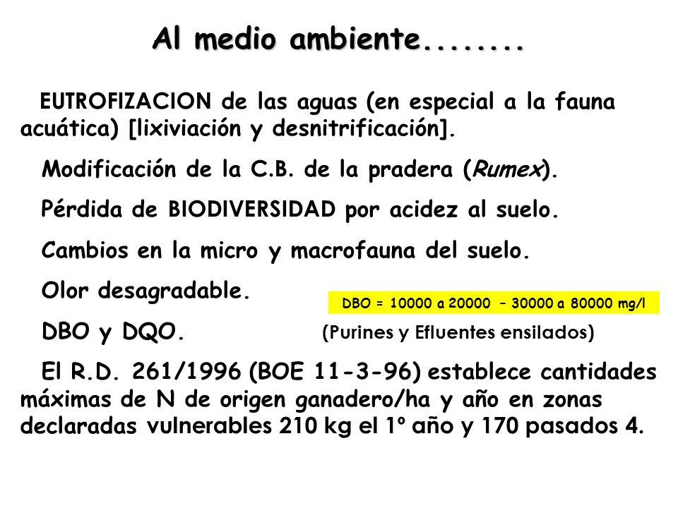 EUTROFIZACION de las aguas (en especial a la fauna acuática) [lixiviación y desnitrificación]. Modificación de la C.B. de la pradera (Rumex). Pérdida