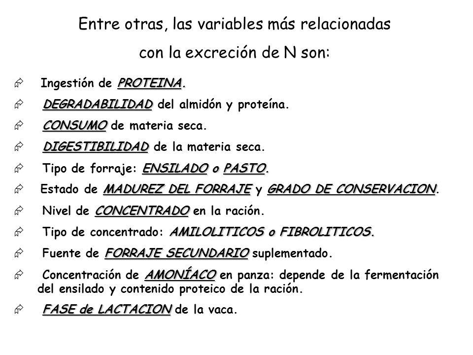 Entre otras, las variables más relacionadas con la excreción de N son: PROTEINA. Ingestión de PROTEINA. DEGRADABILIDAD DEGRADABILIDAD del almidón y pr