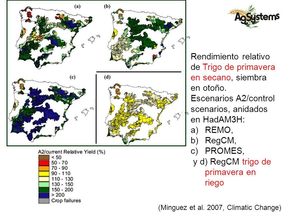 Rendimiento relativo de Trigo de primavera en secano, siembra en otoño. Escenarios A2/control scenarios, anidados en HadAM3H: a)REMO, b)RegCM, c)PROME