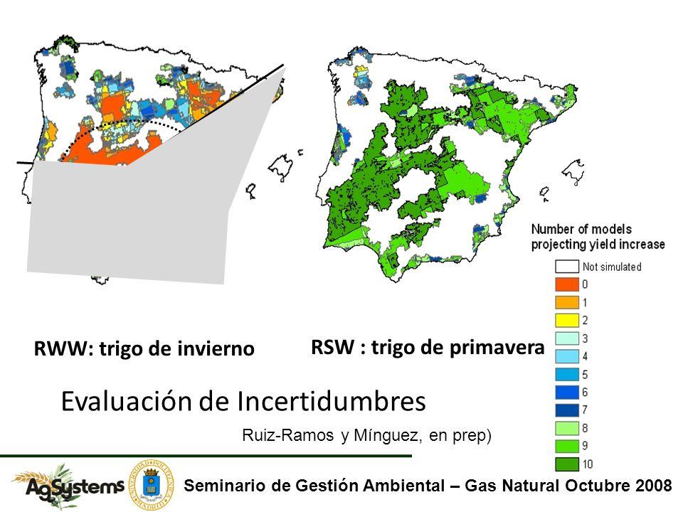 RWW: trigo de invierno RSW : trigo de primavera Evaluación de Incertidumbres Seminario de Gestión Ambiental – Gas Natural Octubre 2008 Ruiz-Ramos y Mí