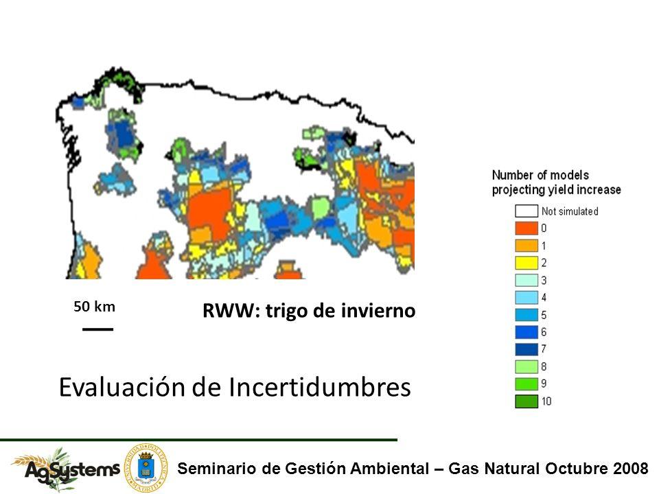 RWW: trigo de invierno Evaluación de Incertidumbres Seminario de Gestión Ambiental – Gas Natural Octubre 2008 50 km