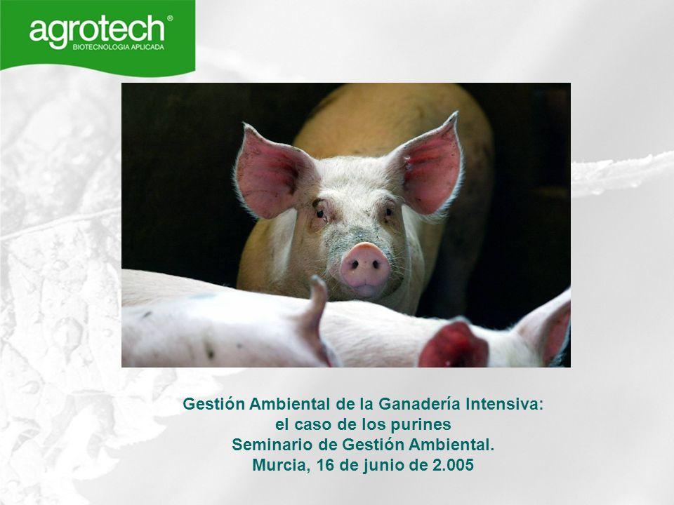 Gestión Ambiental de la Ganadería Intensiva: el caso de los purines Seminario de Gestión Ambiental. Murcia, 16 de junio de 2.005