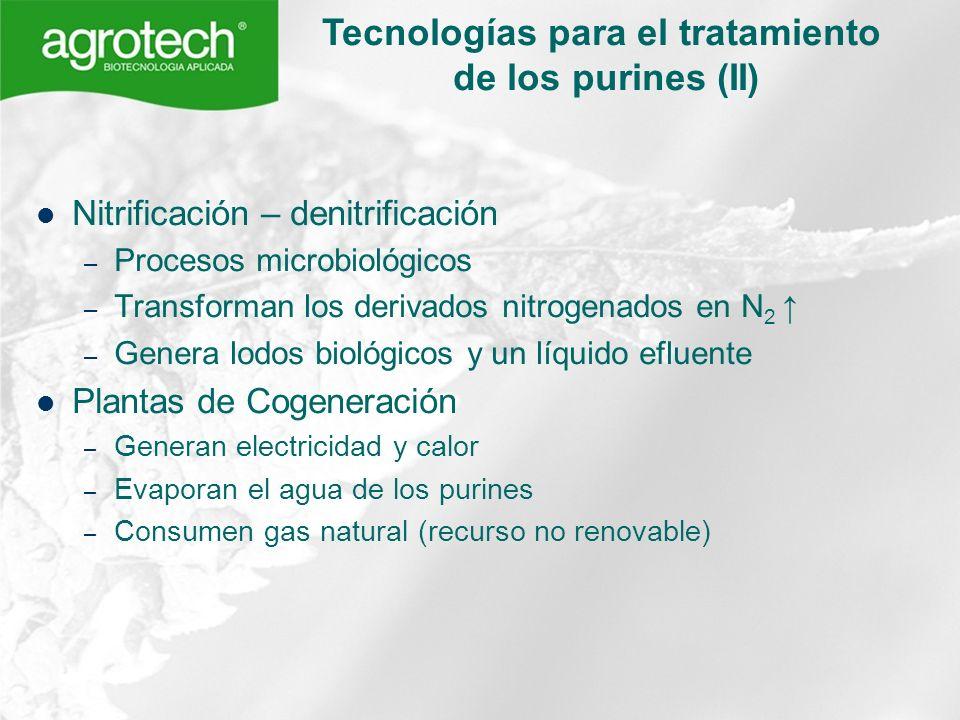 Nitrificación – denitrificación – Procesos microbiológicos – Transforman los derivados nitrogenados en N 2 – Genera lodos biológicos y un líquido eflu
