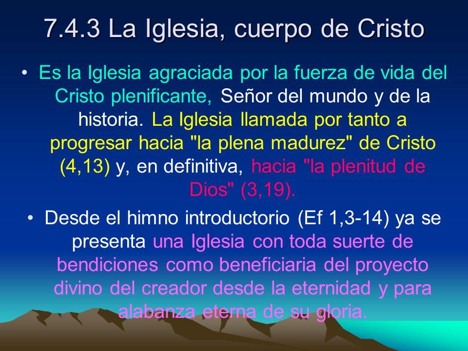 7.4.3 La Iglesia, cuerpo de Cristo Es la Iglesia agraciada por la fuerza de vida del Cristo plenificante, Señor del mundo y de la historia. La Iglesia