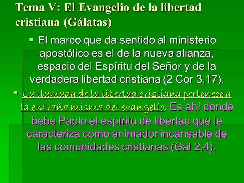 Tema V: El Evangelio de la libertad cristiana (Gálatas) El marco que da sentido al ministerio apostólico es el de la nueva alianza, espacio del Espíritu del Señor y de la verdadera libertad cristiana (2 Cor 3,17).
