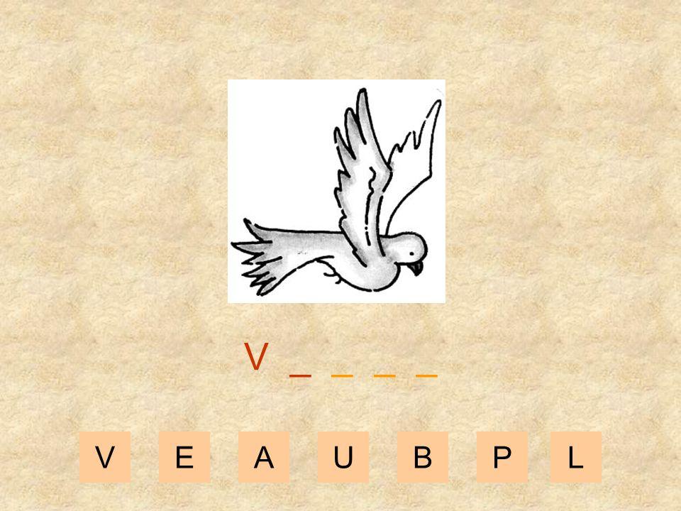 VEAUBPL _ _ _ _ _