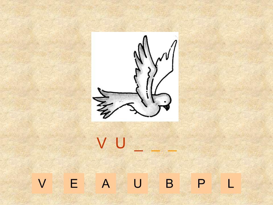 VEAUBPL V _ _ _ _