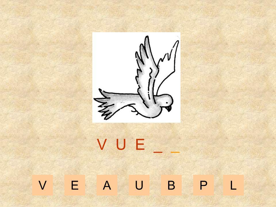VEAUBPL V U _ _ _