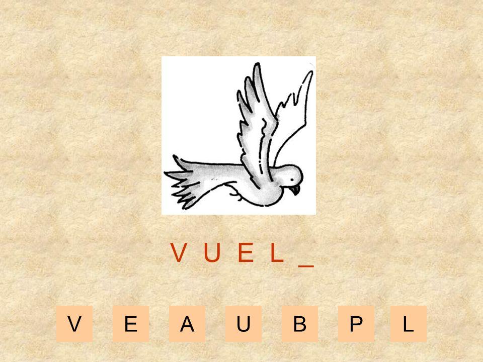 VEAUBPL V U E _ _