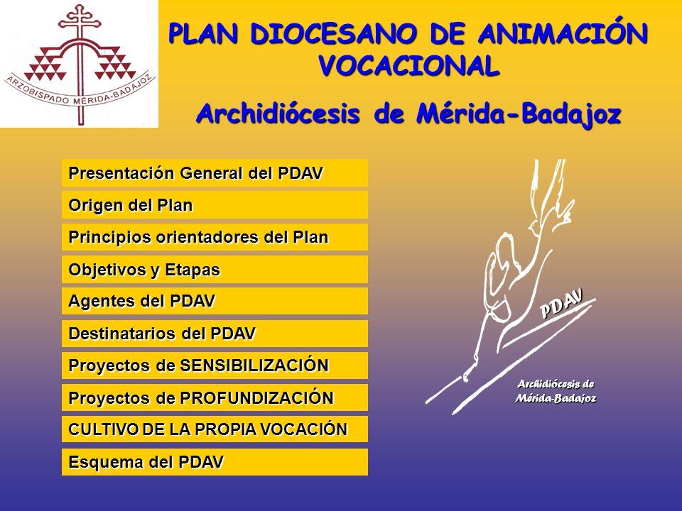 Presentación General del PDAV Presentación General del PDAV Objetivos y Etapas Objetivos y Etapas Proyectos de PROFUNDIZACIÓN Proyectos de PROFUNDIZAC