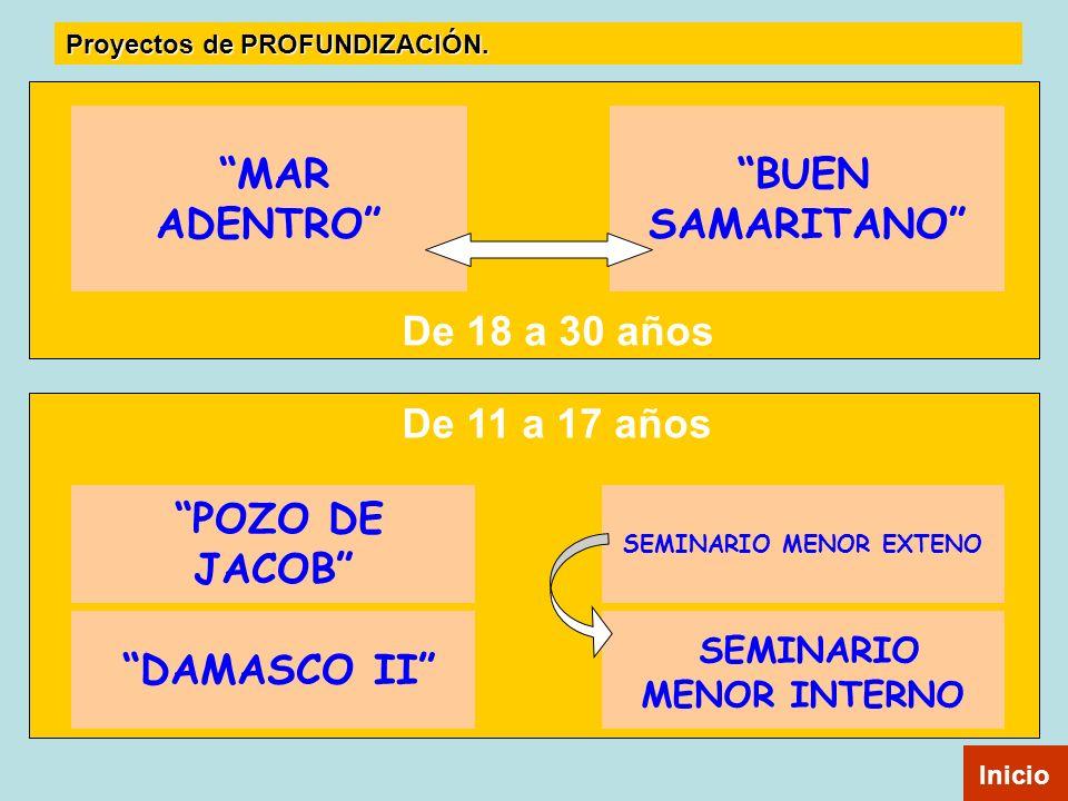 De 11 a 17 años De 18 a 30 años BUEN SAMARITANO MAR ADENTRO POZO DE JACOB DAMASCO II SEMINARIO MENOR EXTENO SEMINARIO MENOR INTERNO Inicio Proyectos d