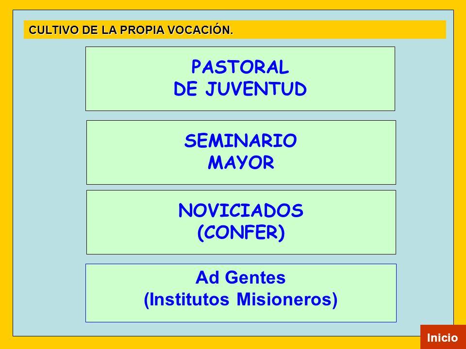 NOVICIADOS (CONFER) SEMINARIO MAYOR PASTORAL DE JUVENTUD Inicio CULTIVO DE LA PROPIA VOCACIÓN. Ad Gentes (Institutos Misioneros)
