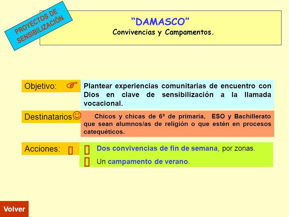 DAMASCO Convivencias y Campamentos. Objetivo: Destinatarios: Acciones: Chicos y chicas de 6º de primaria, ESO y Bachillerato que sean alumnos/as de re