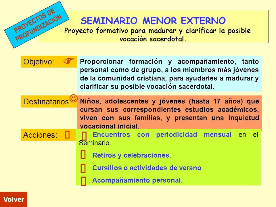 SEMINARIO MENOR EXTERNO Proyecto formativo para madurar y clarificar la posible vocación sacerdotal. Objetivo: Destinatarios: Acciones: Niños, adolesc