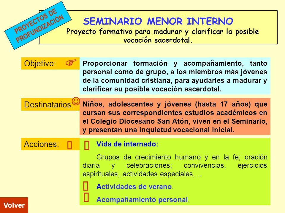 SEMINARIO MENOR INTERNO Proyecto formativo para madurar y clarificar la posible vocación sacerdotal. Objetivo: Destinatarios: Acciones: Niños, adolesc