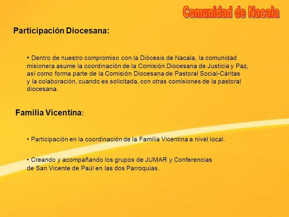 Familia Vicentina : Participación en la coordinación de la Familia Vicentina a nivel local. Participación Diocesana: Dentro de nuestro compromiso con