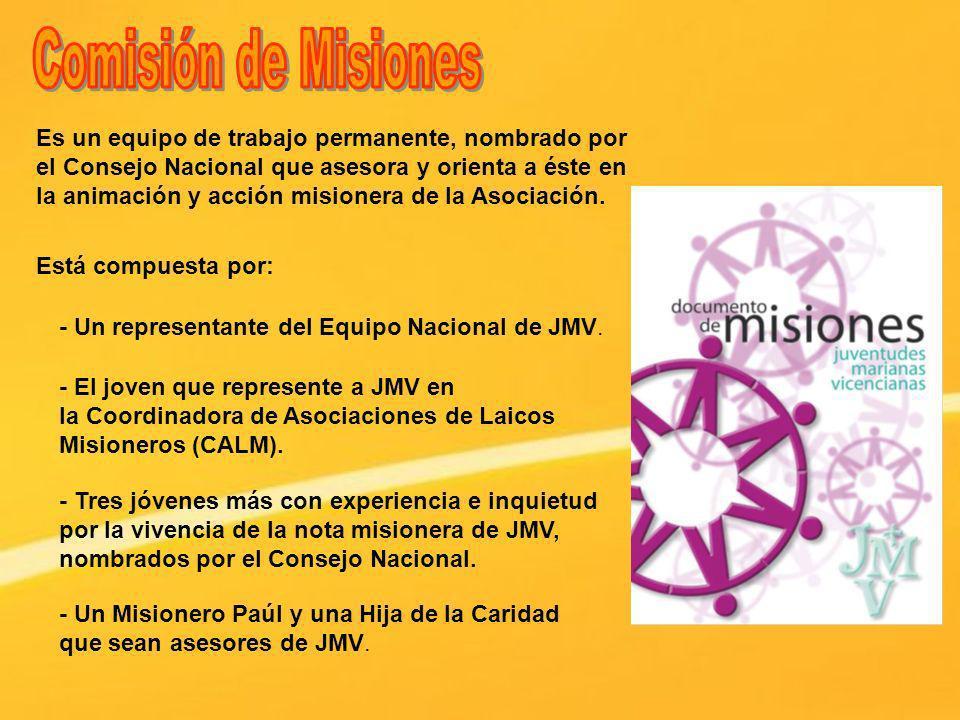 Es un equipo de trabajo permanente, nombrado por el Consejo Nacional que asesora y orienta a éste en la animación y acción misionera de la Asociación.