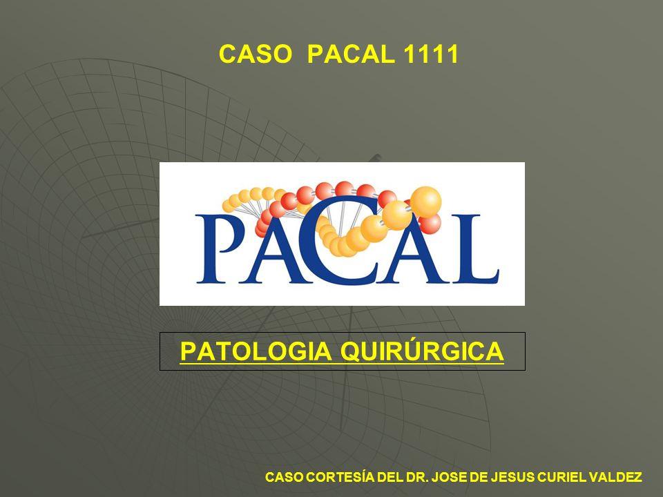 CASO PACAL 1111 PATOLOGIA QUIRÚRGICA CASO CORTESÍA DEL DR. JOSE DE JESUS CURIEL VALDEZ