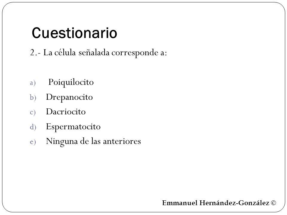 Cuestionario 2.- La célula señalada corresponde a: a) Poiquilocito b) Drepanocito c) Dacriocito d) Espermatocito e) Ninguna de las anteriores Emmanuel