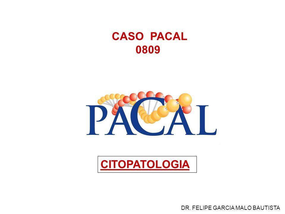 CASO PACAL 0809 CITOPATOLOGIA DR. FELIPE GARCIA MALO BAUTISTA