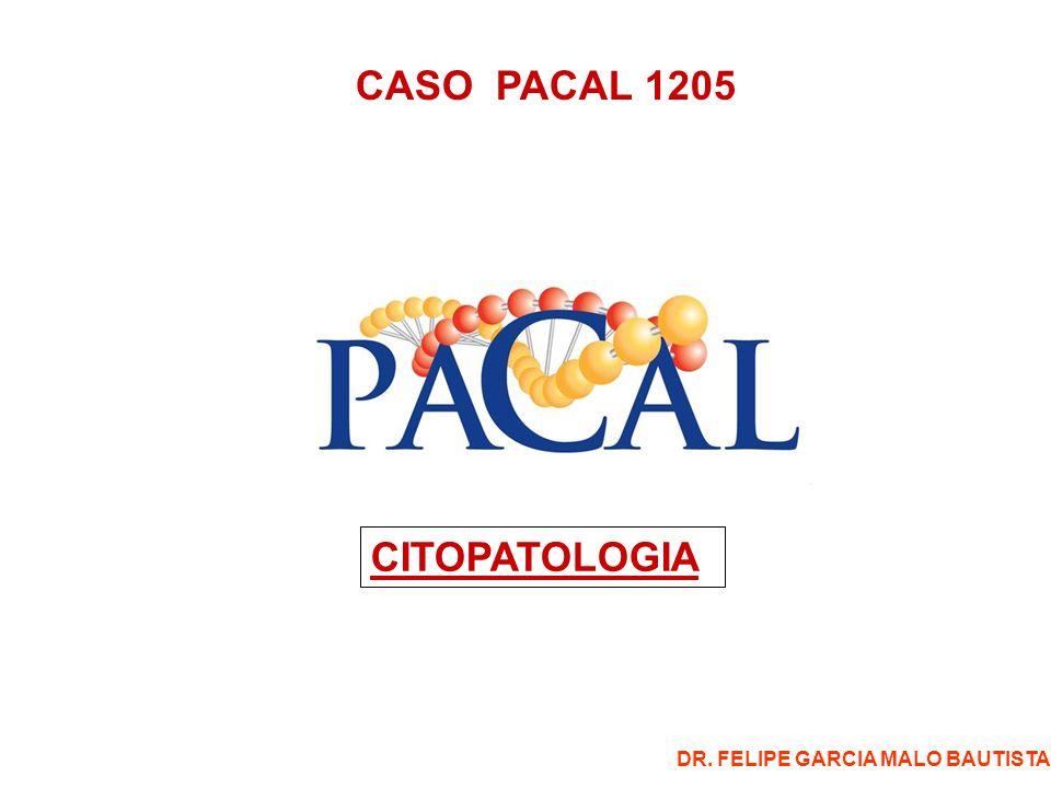 CASO PACAL 1205 CITOPATOLOGIA DR. FELIPE GARCIA MALO BAUTISTA