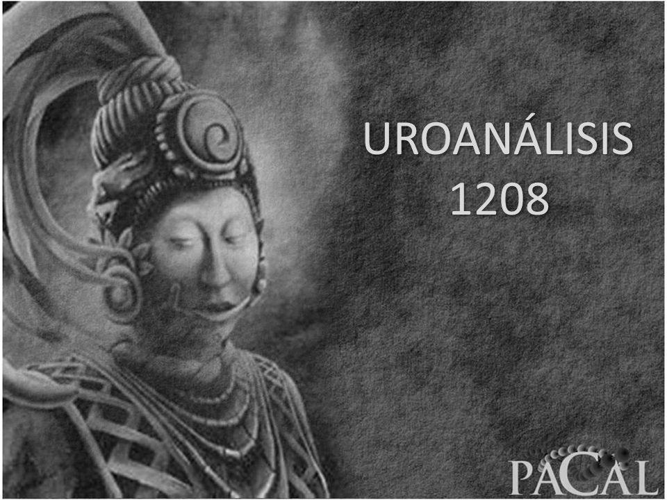 UROANÁLISIS 1208 UROANÁLISIS 1208