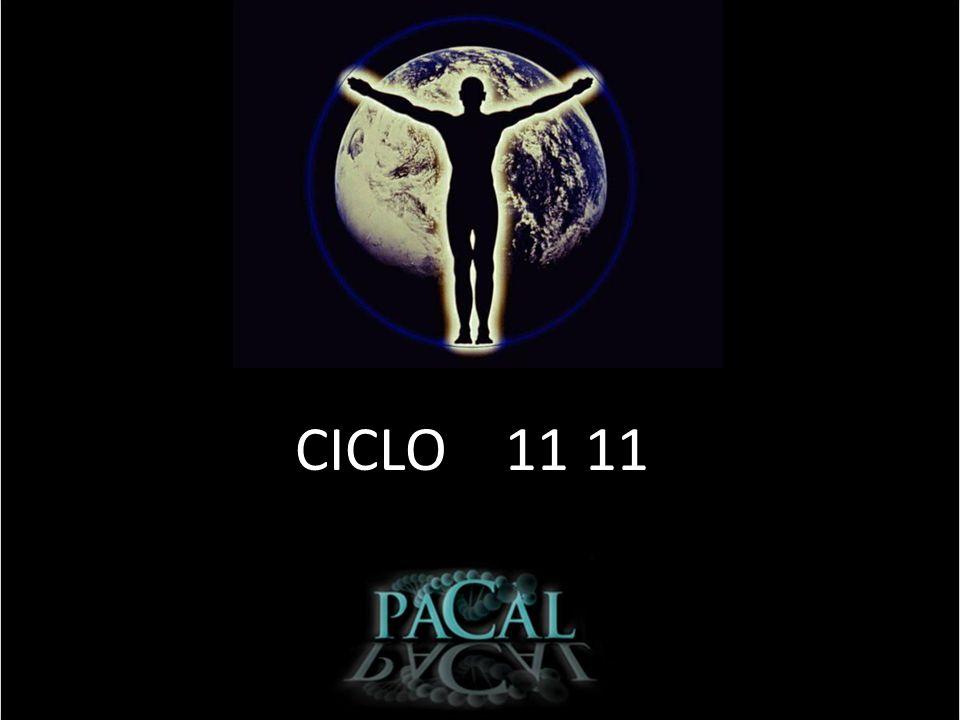 CICLO 11 11