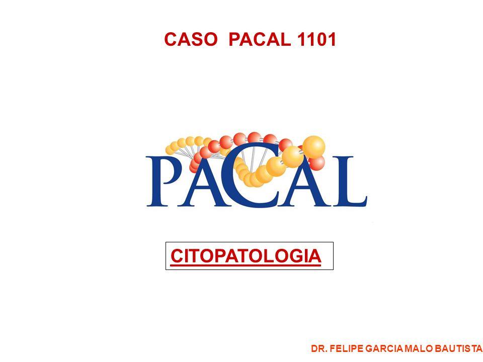 CASO CITOPATOLOGIA 1101 Emita su diagnóstico por cada una de las imágenes en campo fijo: -1.